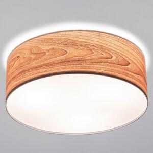 Paulmann 79687 Stropní svítidla