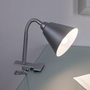 Paulmann 95432 Stolní lampy a lampičky s klipem