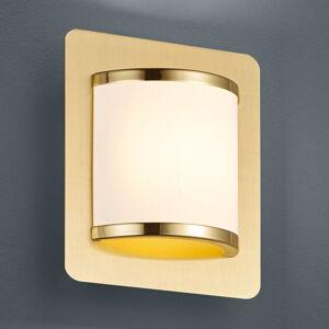 Trio Lighting Nástěnné LED světlo Agento matná mosaz