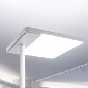 GLamOX LIF223401 Stojací lampa